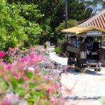 沖縄新婚旅行で離島に行くならおすすめの観光スポット 竹富島&一押しホテル