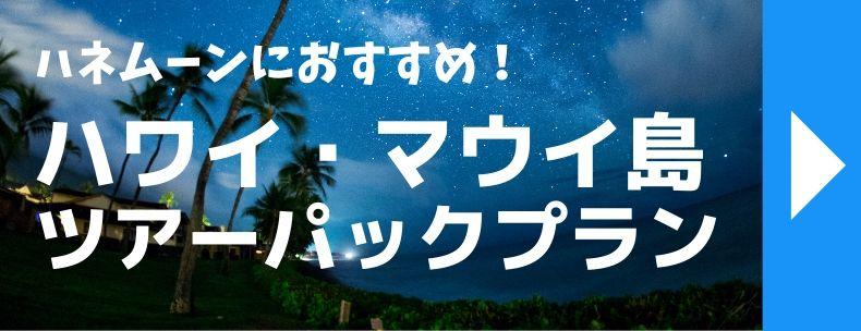 新婚旅行におすすめハワイ・マウイ島ツアーパックプラン