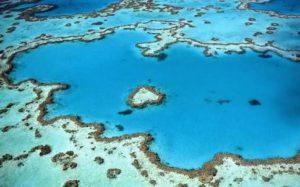 オーストラリアのおすすめ観光スポット グレート・バリア・リーフ