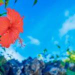 先輩カップルがおすすめする沖縄の人気リゾートホテル10選!