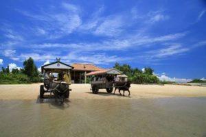 沖縄離島でおすすめの観光スポット 西表島