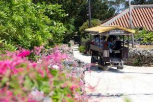 沖縄離島で1番おすすめの観光スポット 竹富島