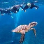 沖縄ハネムーンで離島に行くならおすすめの観光スポット慶良間諸島&一押しホテル・格安航空券付きパックプラン