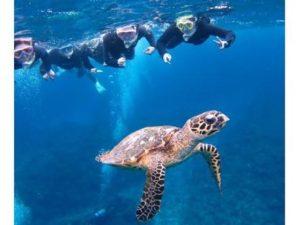 沖縄離島でおすすめの観光スポット 慶良間諸島