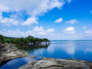 西表島の見どころ