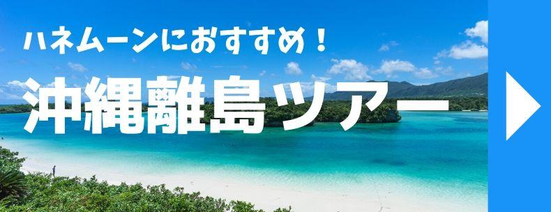 ハネムーンにおすすめ!沖縄離島ツアー
